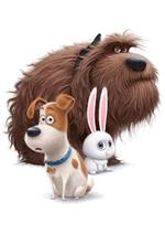 Раскраски - Мультфильм - Тайная жизнь домашних животных