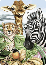 Раскраски - Животные - Дикие животные