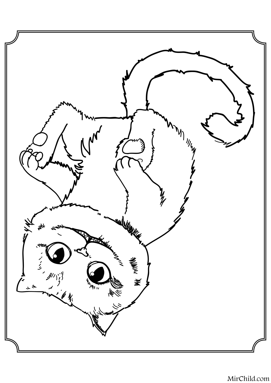 Раскраска - Алиса в Зазеркалье - Чеширский Кот