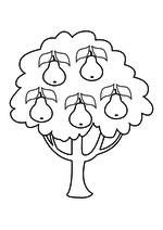 Раскраска - Малышам - Грушевое дерево