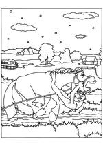 Раскраска - Иван Царевич и Серый волк - Волк повис на скачущей лошади