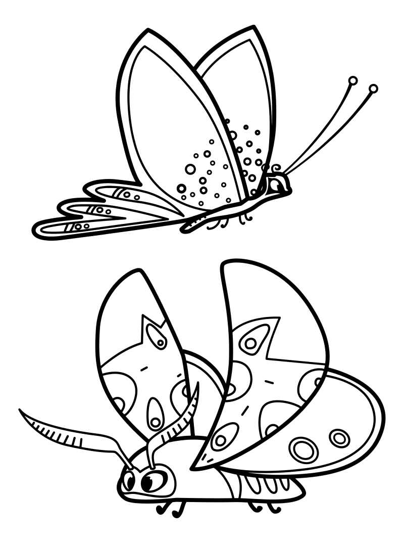Раскраска - Лео и Тиг - Бабочки