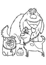 Раскраска - Тайная жизнь домашних животных - Дюк, Мэл, Норман и Макс