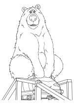 Медведь Бумер