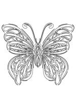 Раскраска - Узорные бабочки - Узорная бабочка 2