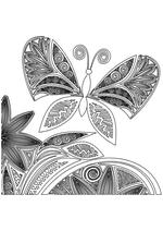 Раскраска - Узорные бабочки - Узорная бабочка с растениями 3