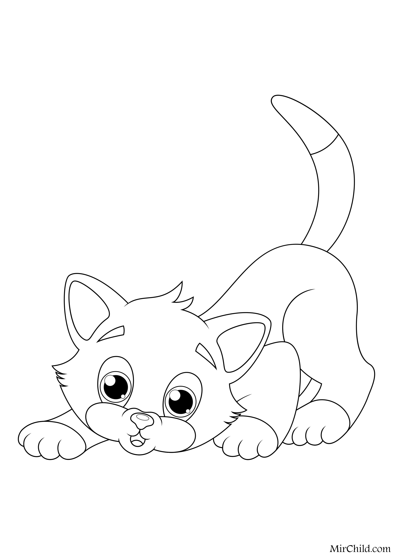 Раскраска - Кошки - Рыжий котёнок охотится | MirChild