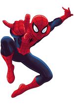 Раскраски - Мультфильм - Совершенный Человек-паук (Ultimate Spider-Man)