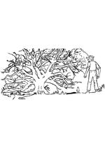 Раскраска - Большой и добрый великан - Дерево снов