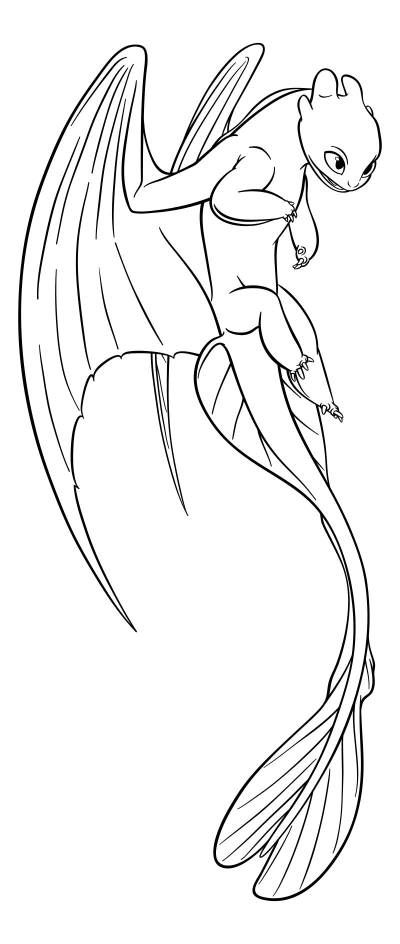 Раскраска - Как приручить дракона 3 - Дневная Фурия | MirChild
