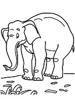 Раскраска - Мама для мамонтёнка - Слониха