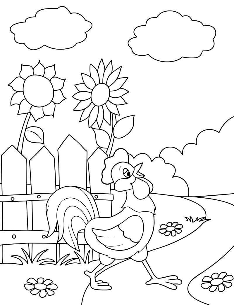 Раскраска - Простоквашино - Петух гуляет по Простоквашино