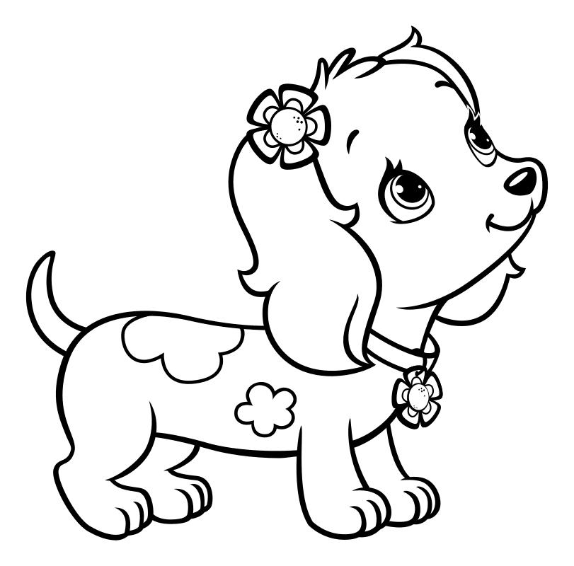 Картинки с собачками для раскрашивания распечатать, днем рождения