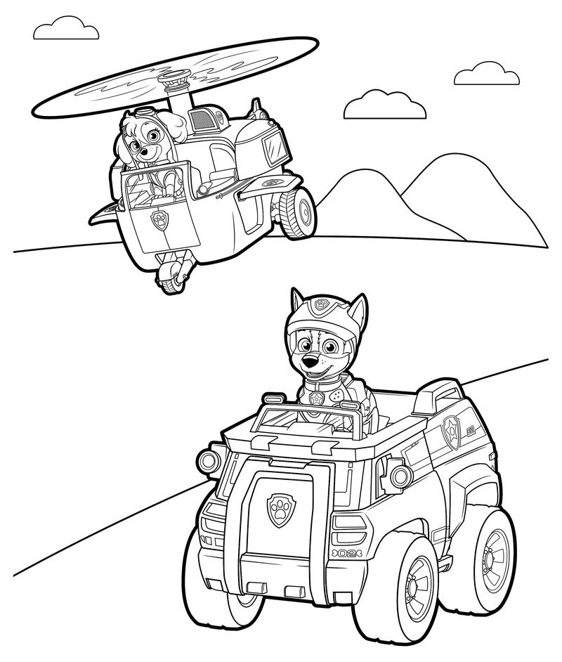 раскраска щенячий патруль скай и чейз Mirchild