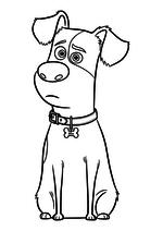 Раскраска - Тайная жизнь домашних животных - Терьер Макс