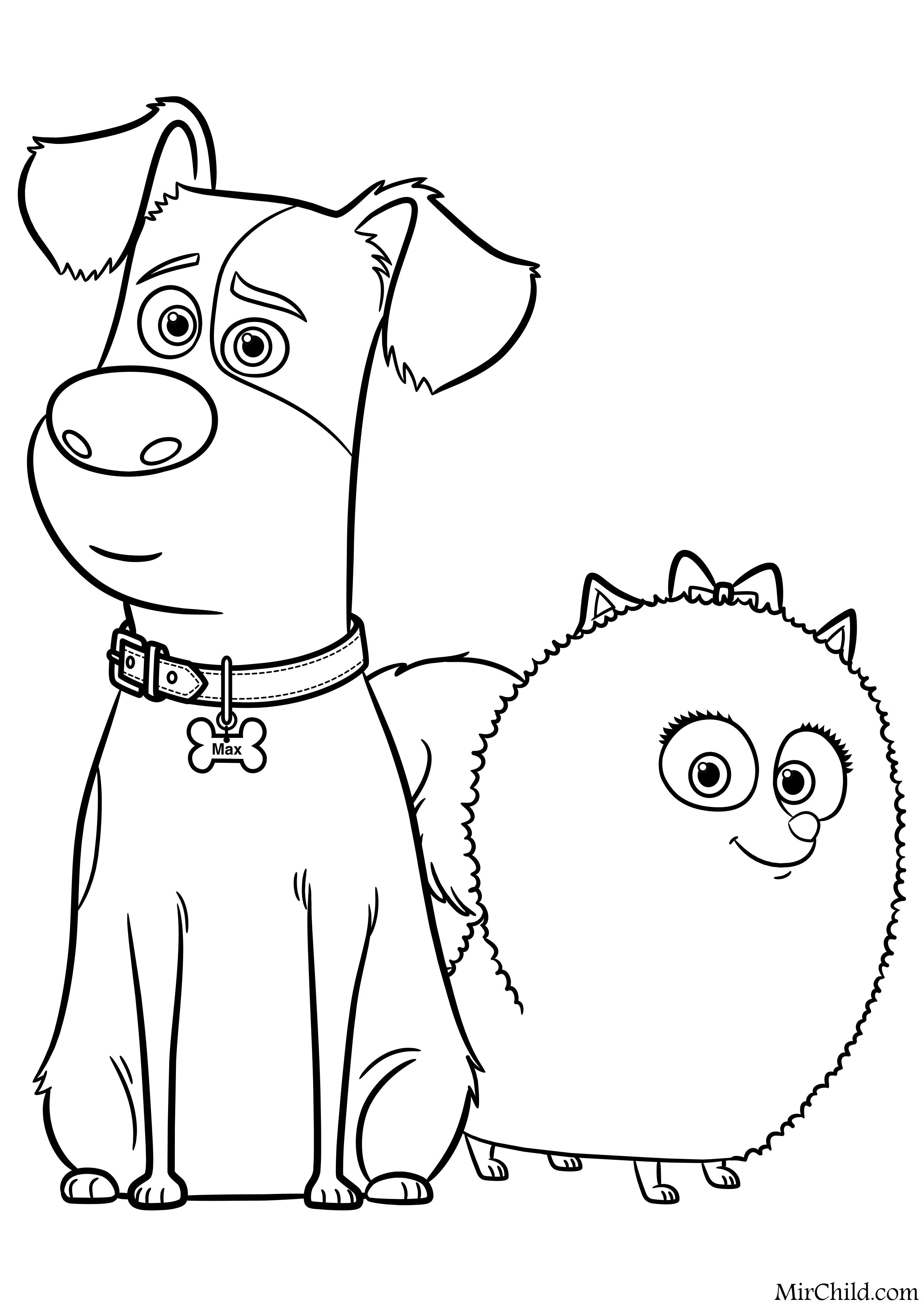 Раскраска - Тайная жизнь домашних животных - Макс и Гиджет ...