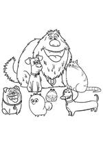 Раскраска - Тайная жизнь домашних животных - Домашние животные вместе