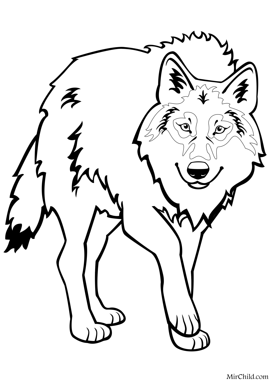 Раскраска - Дикие животные - Волк | MirChild