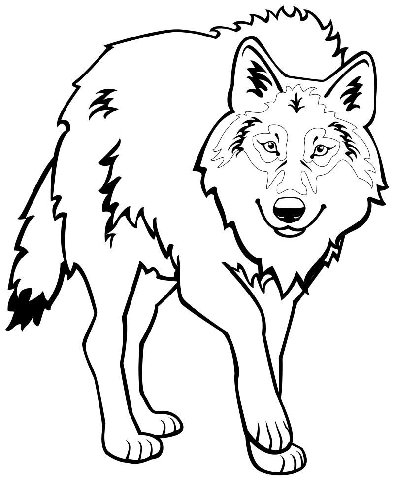 волк раскраска картинка