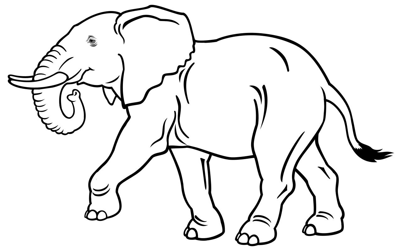Раскраска - Дикие животные - Слон