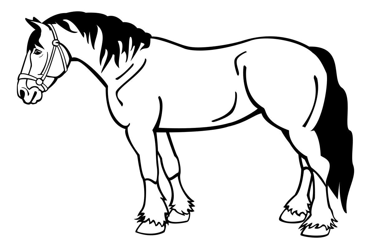 Черно белая картинка лошадки
