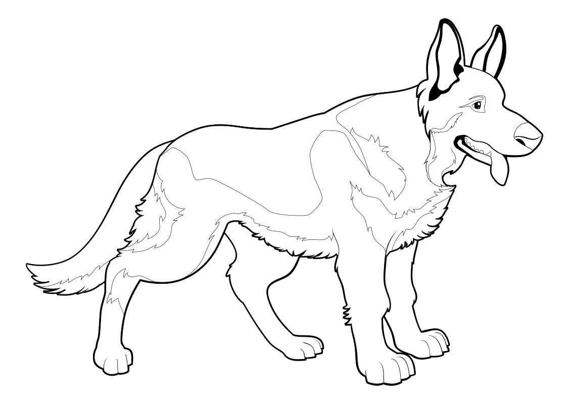 Раскраска - Собаки - Немецкая овчарка